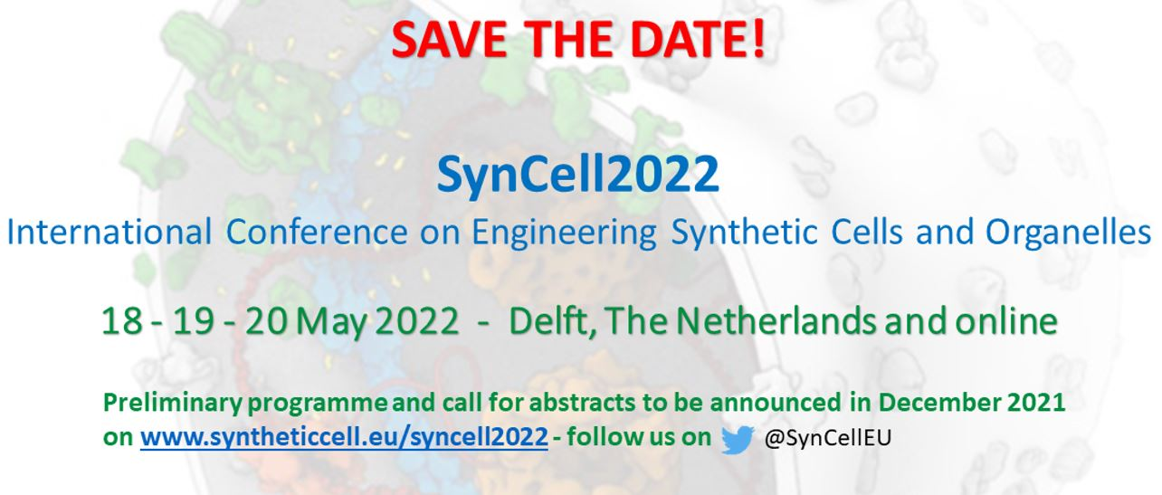 Syncell2022
